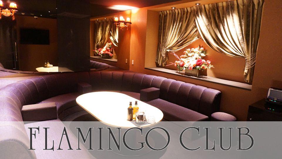 熊本市 中央区キャバクラ求人 FLAMINGO CLUB(フラミンゴクラブ)の体験入店情報