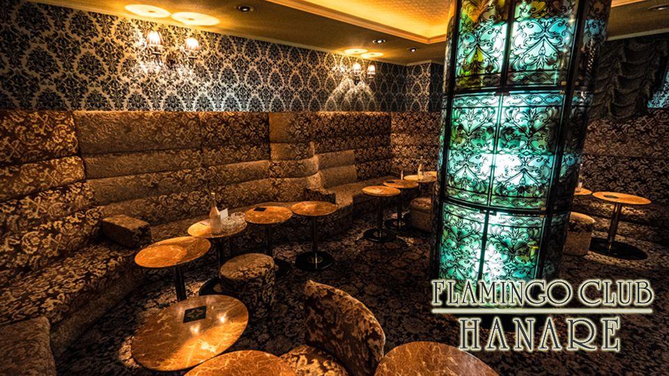 熊本市 中央区キャバクラ求人 FLAMINGO CLUB HANARE(フラミンゴクラブ ハナレ)の体験入店情報