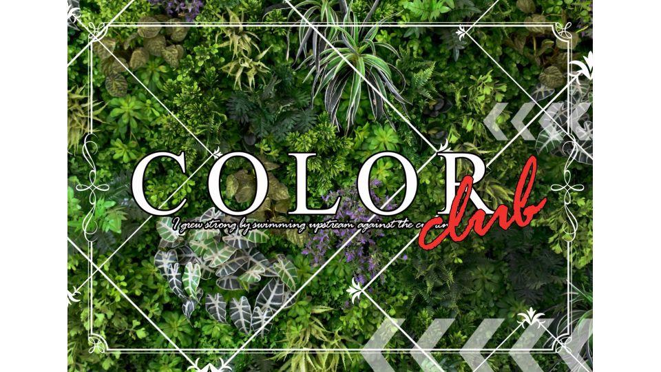 浜松市 中区キャバクラ求人 COLOR(カラー)の体験入店情報