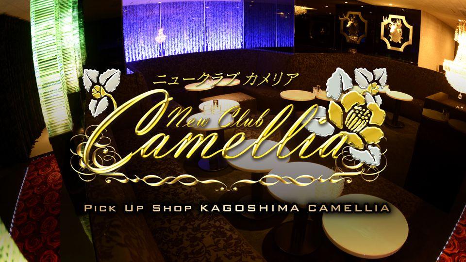 鹿児島市 山之口町キャバクラ求人 New Club Camellia(カメリア)の体験入店情報