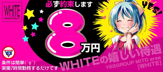 WHITE (ホワイト)