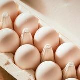 週に3個以上の卵を摂取、心疾患のリスク増大か 米研究